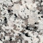 Bianco-Sardol-5.jpg