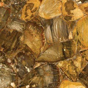desert petrified wood stone from grama blend uk